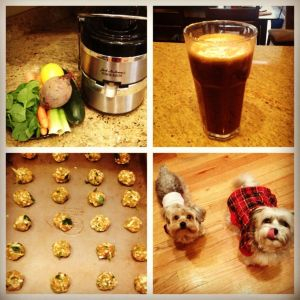 juicing for dogs